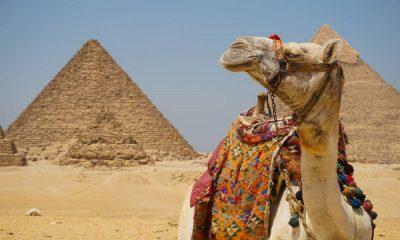 Cuánto cuesta ir a Egipto